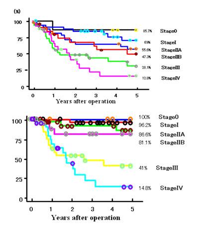 ステージ 生存 胃がん 率 4 ステージ4は手遅れなのか?生存率だけでは分らないがんサバイバーになれる可能性